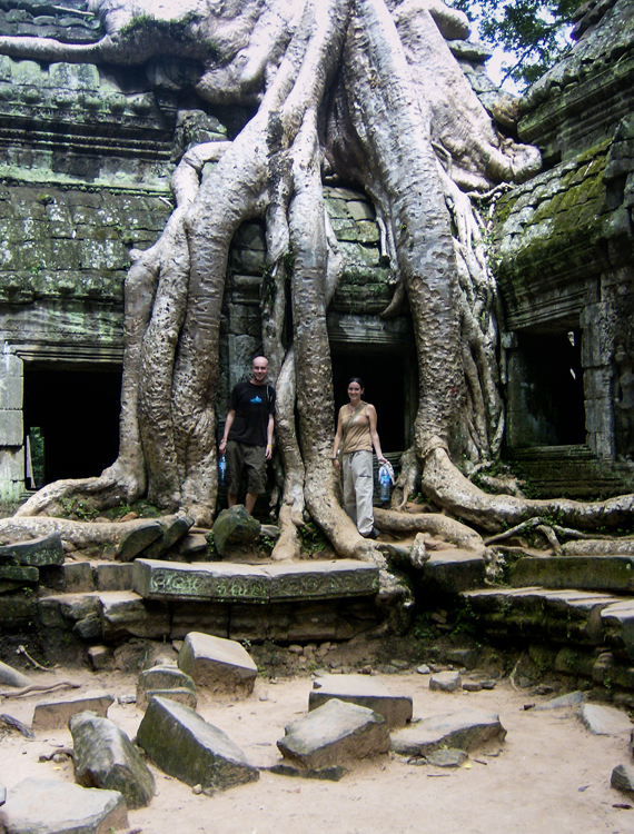 A giant tree root growing over one of the Angkor temples.