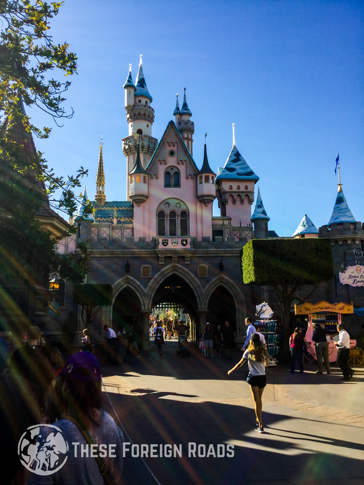 The Famous Disneyland Castle