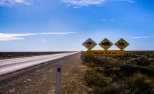 Crossing the Nullarbor