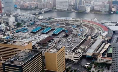 Visiting Tokyo's<br>Tsukiji Fish Market