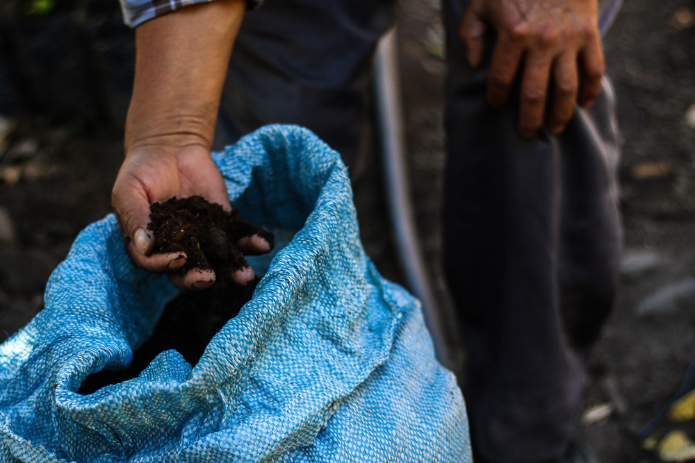 A Guatemalan coffee farmer showing us a bag of manure-based fertilizer