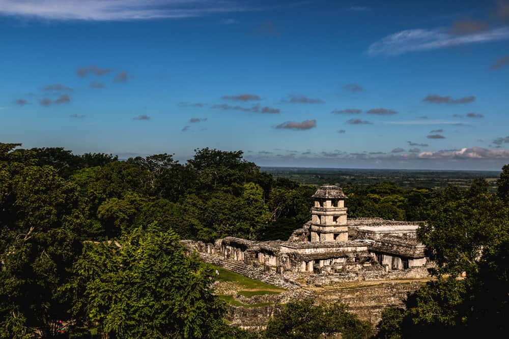 Looking down at the massive Paleque palace surrounded by jungle