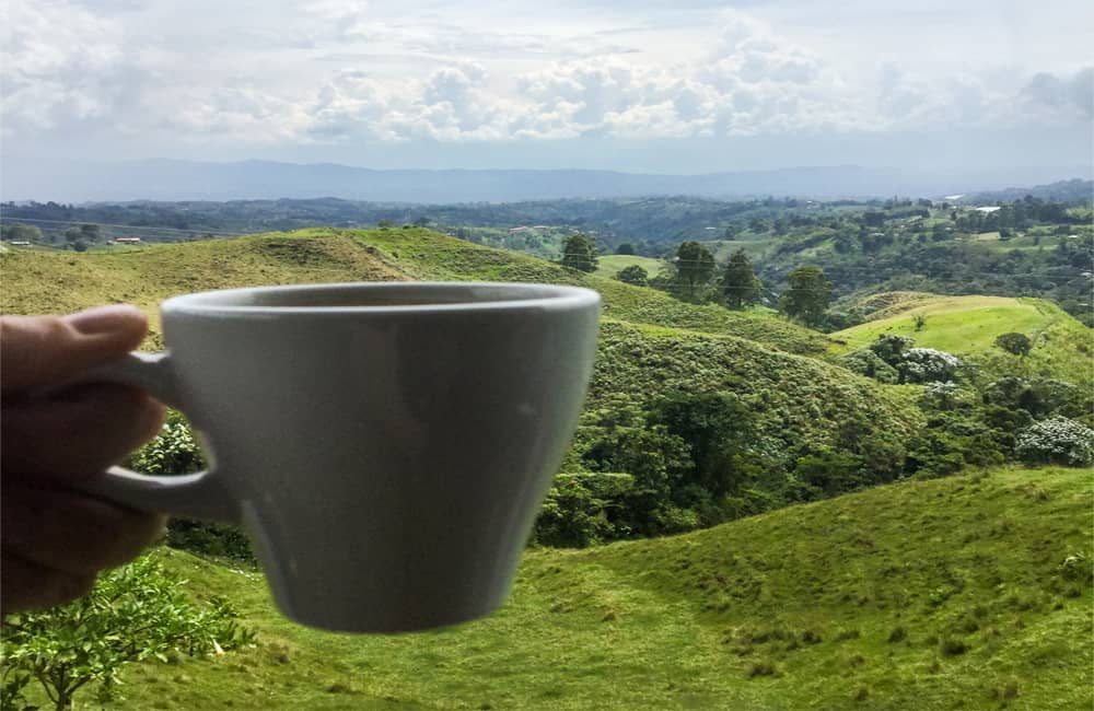 Colombia Food : Overlooking coffee fields with a cup of Colombian coffee