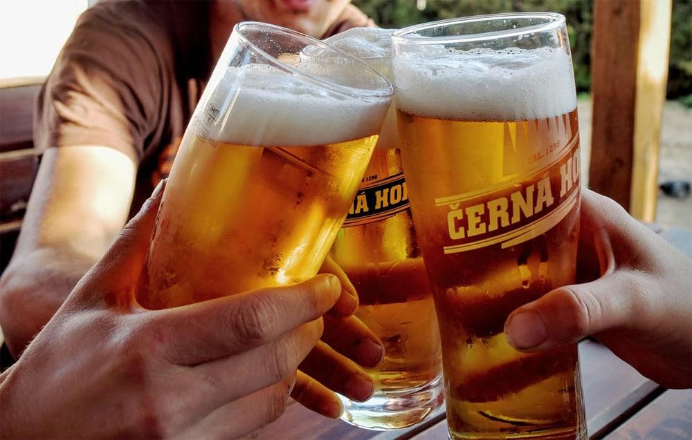 Several people toasting beer glasses
