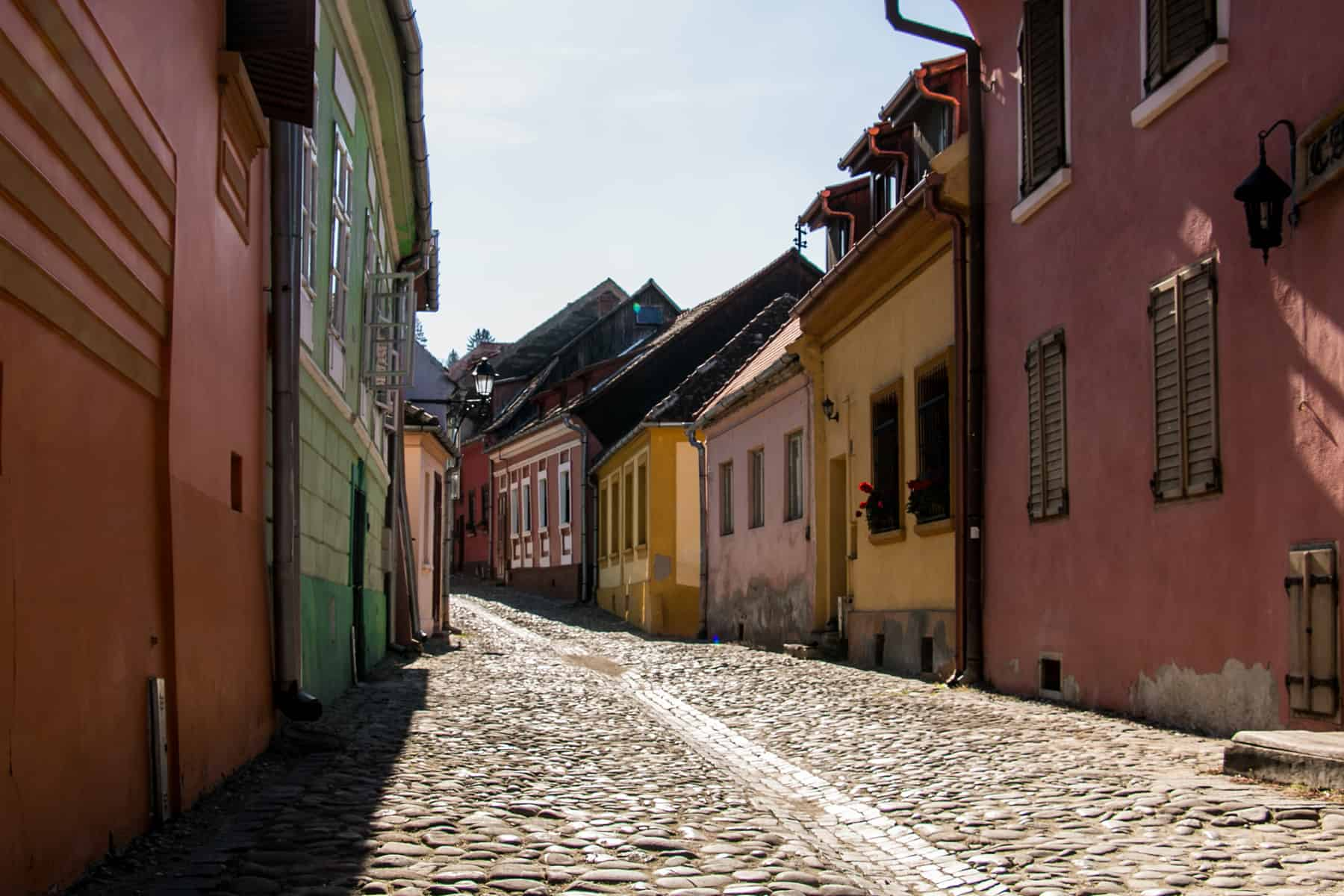 Colourful houses line a cobblestone street in Sighisoara Romania