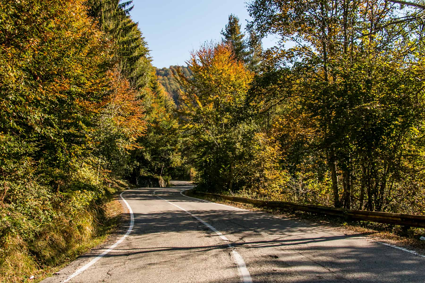 A road in autumn in Transylvania, Romania