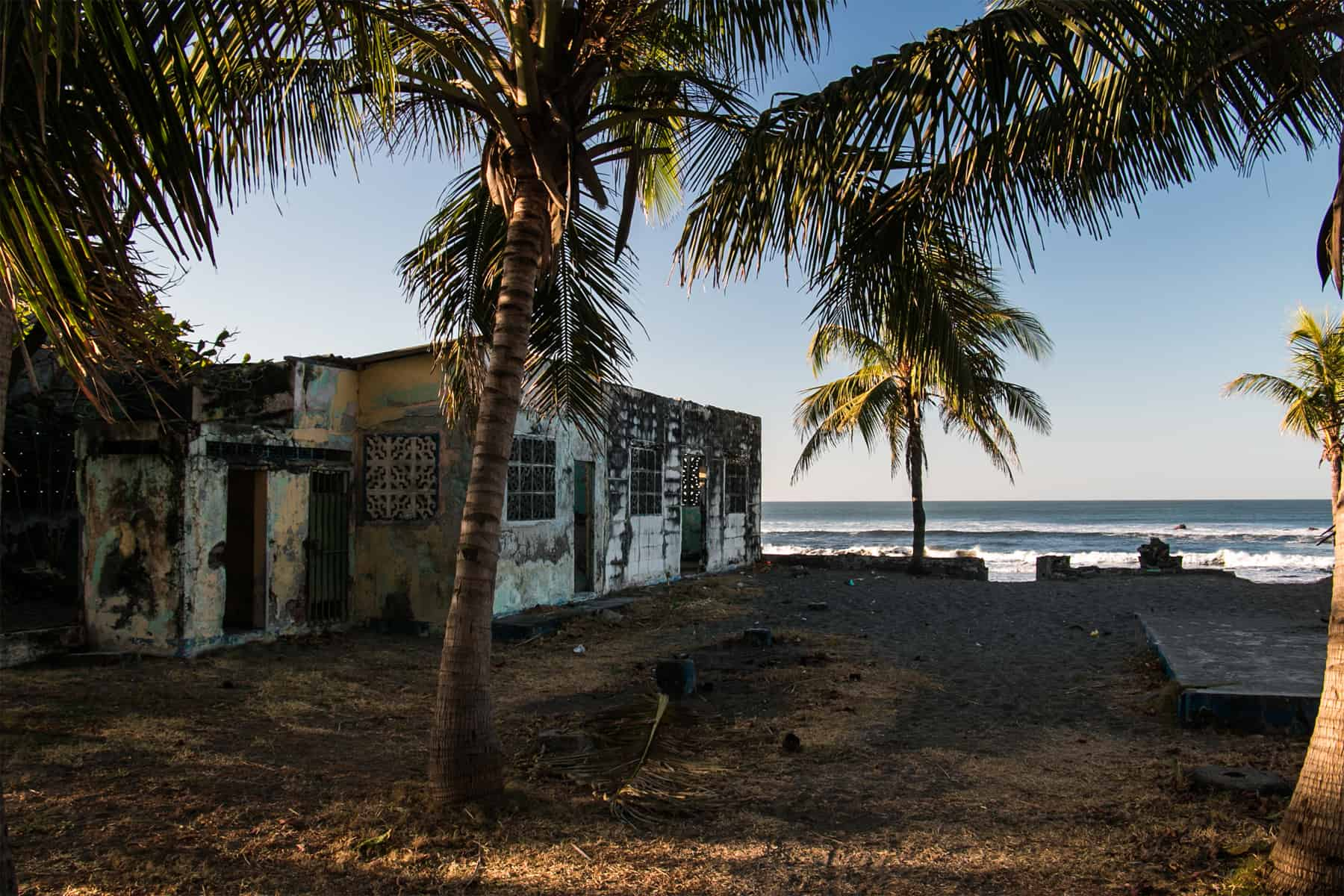 Palm trees beside an old crumbling building on the beach