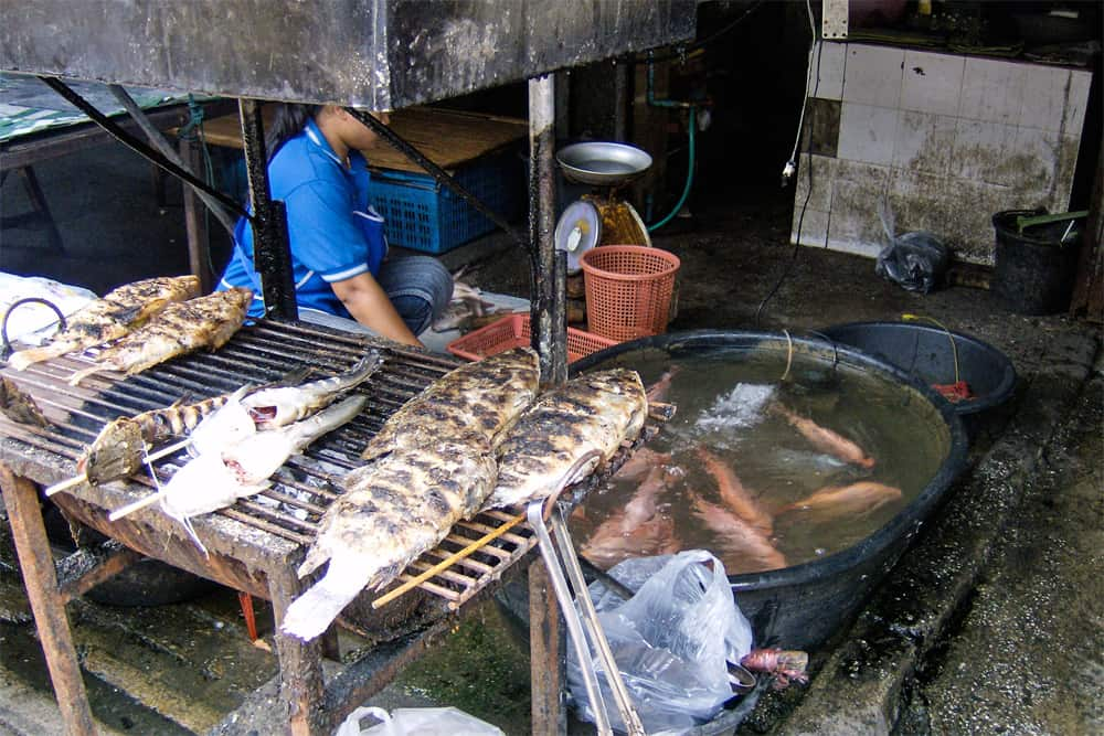 Fish grilling over charcoal. A woman stand behind grill and beside a pail filled with live fish.