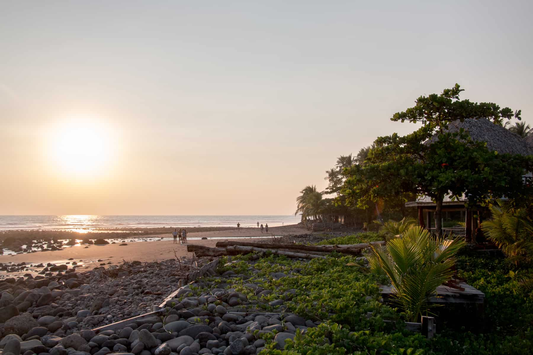 Sun setting over a beach with trees lining it in El Zonte