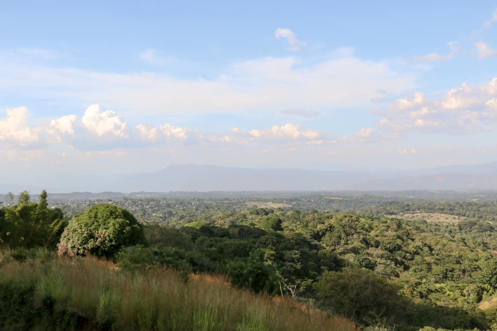 View of green fields and jungle from above in El Salvador
