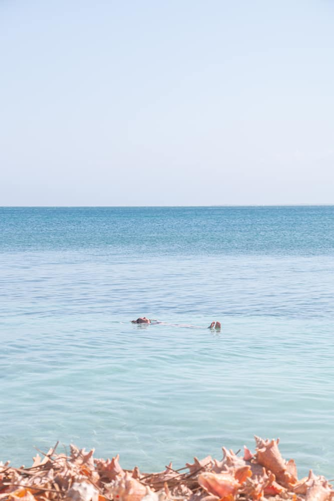 Woman floating in the water. Seashells in the foreground
