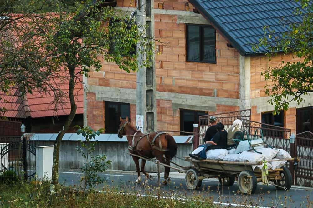 A couple with some logs in the back of a horse-drawn cart in Romania